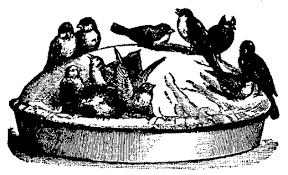 crow pie 7