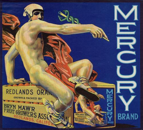 Mercury brand oranges