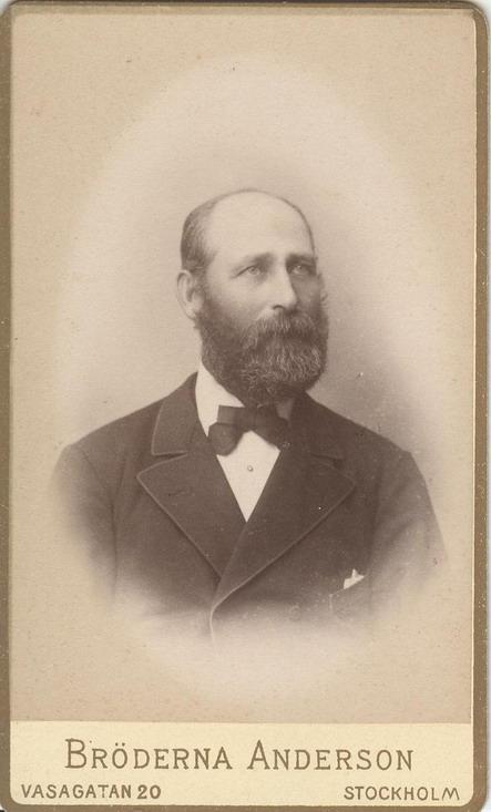 Vintage Swedish Beard