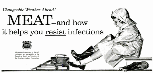 MEAT – and how it helps you resist infections
