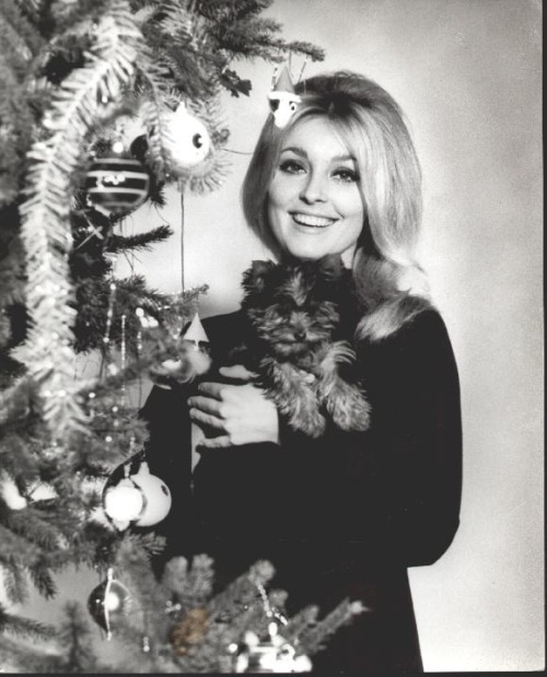 Christmas photo, Sharon Tate
