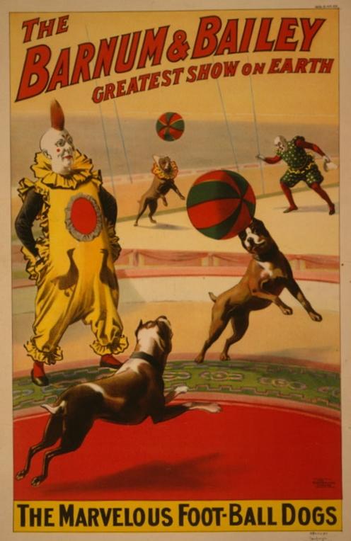 Barnum & Bailey FootballBulldogs