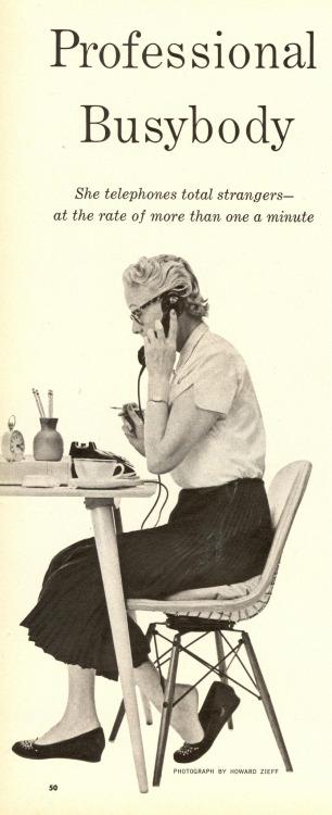 Professional Busybody