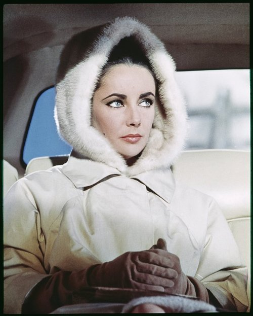 Movie stars with white fur: Elizabeth Taylor in a furhood