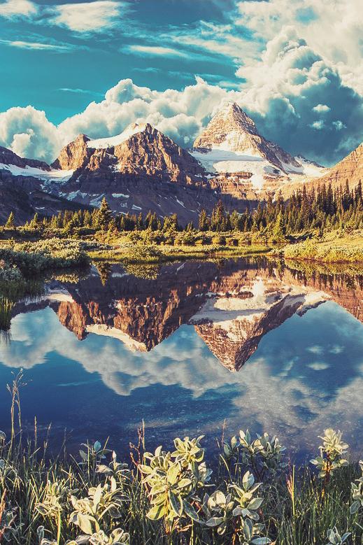 mountain alex gruski