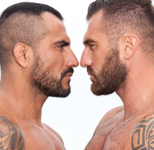 Bearded men, face-to-face