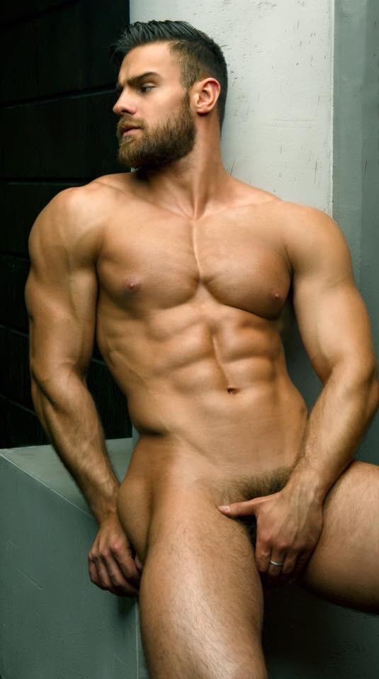 beard 244
