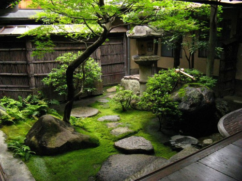 japanese garden 41