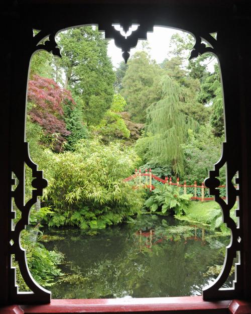 japanese garden 4244