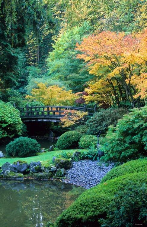 japanese garden portland 3