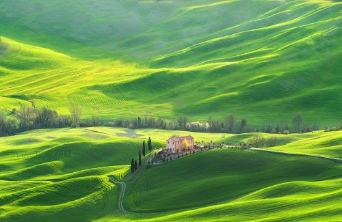 italt tuscany spring 501