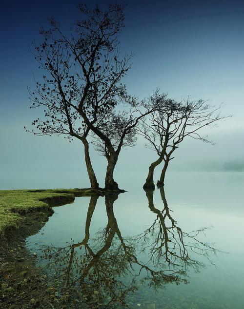Reflection (Photo by MarkLittlejohn)