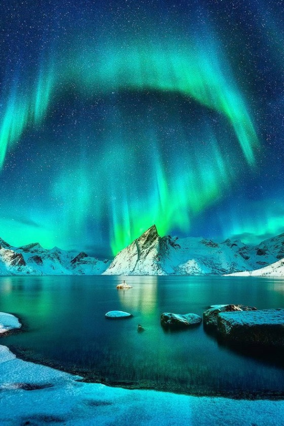 northern lights Lofoten Islands