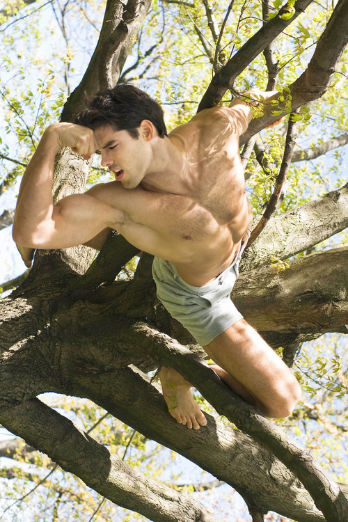 shirtless in a tree