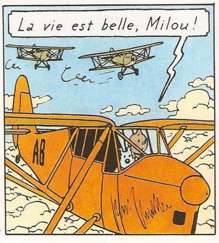 Tintin: La vie est belle,Milou!
