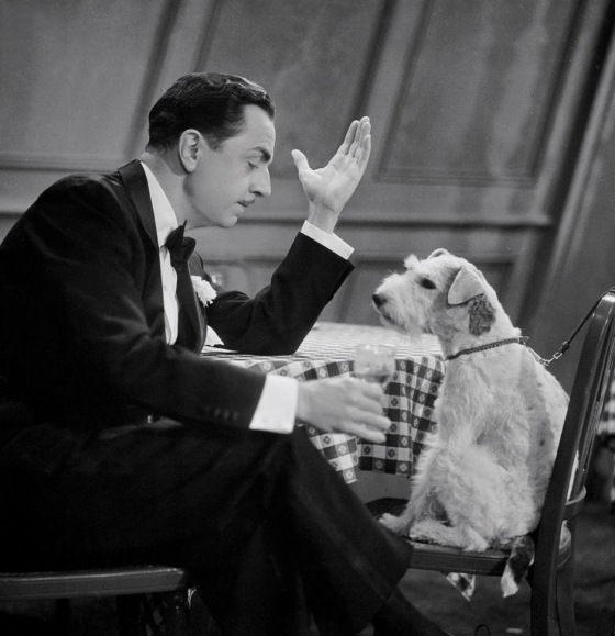 Shadow of the Thin Man (1941) Directed by W.S. Van Dyke Shown from left: William Powell, Asta