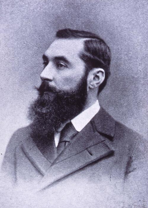 beard 7906