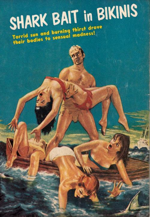 shark bait in bikinis