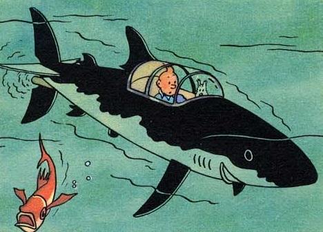 tin tin shark