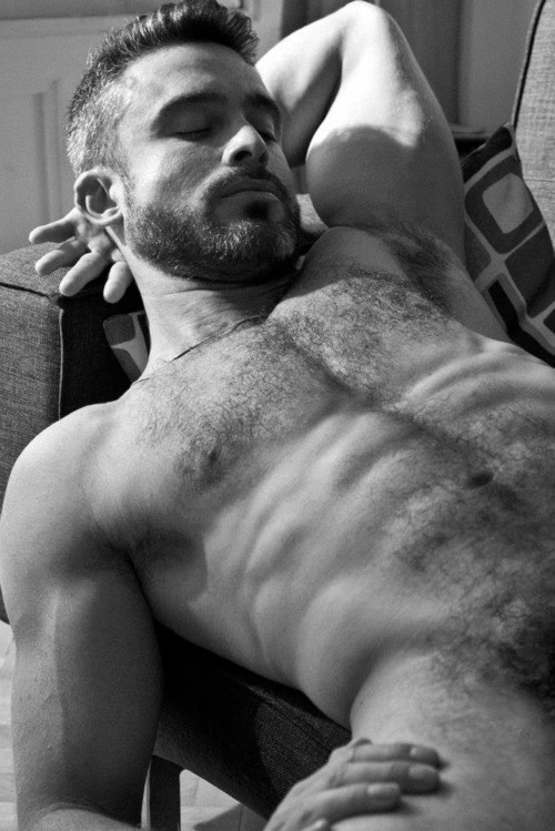 beard 1312