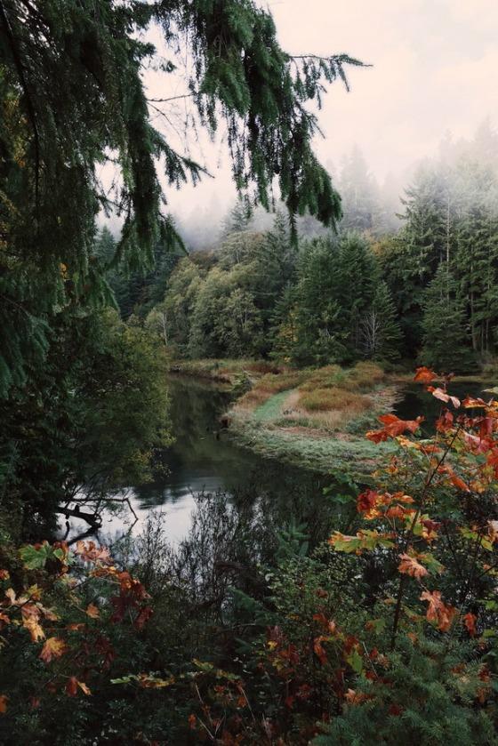 autumn-alex-harley
