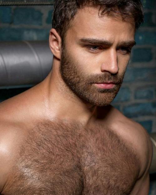 beard-5225