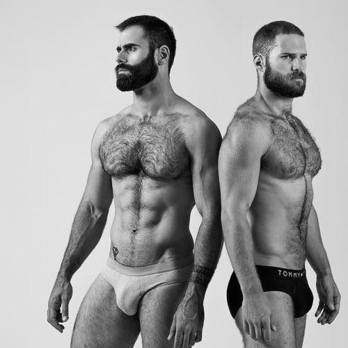 beards-33501