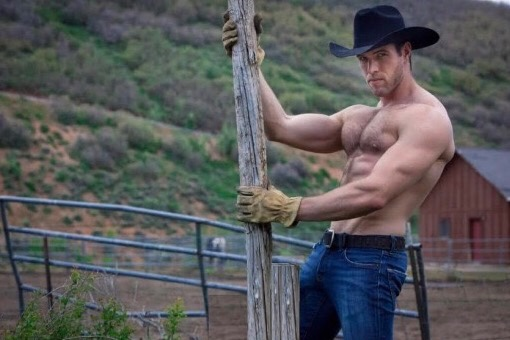 cowboy-71284