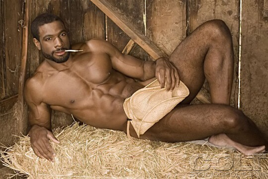 cowboy-71285