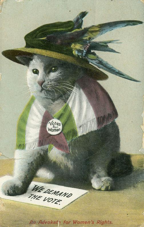 feline-suffragette