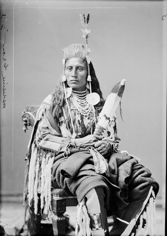 native-american-medicine-crow-crow-1880