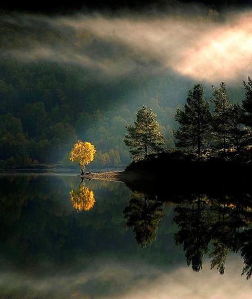 scotland-903