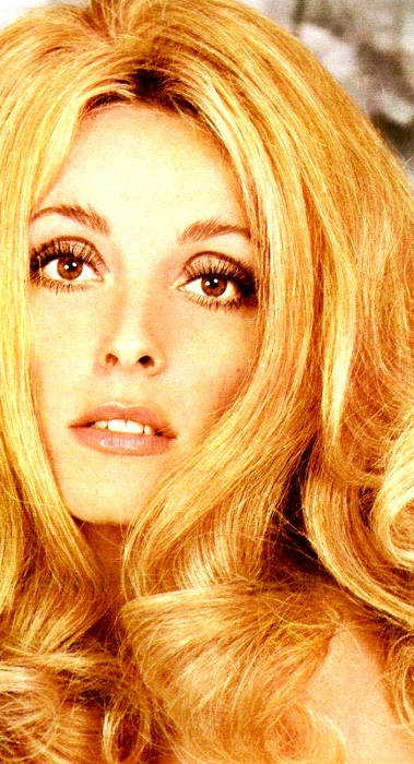 sharon-tate-9501