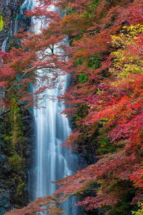 waterfall-124