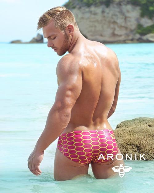 aronik-8501