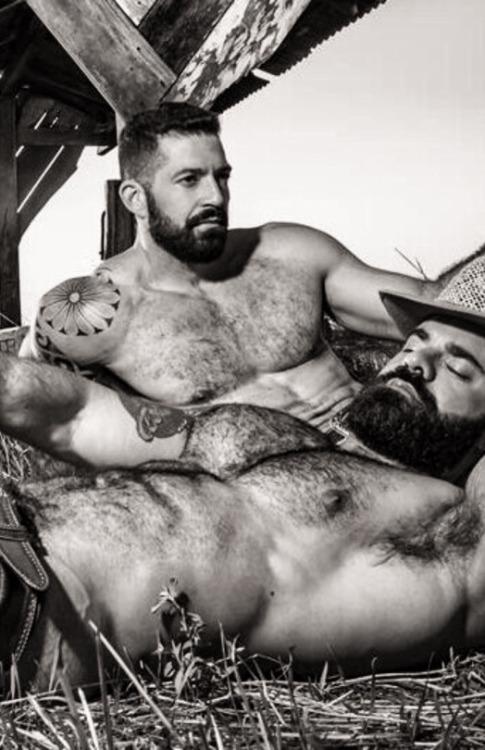 beard-811282