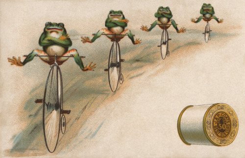 frog-twine-penny-farthing