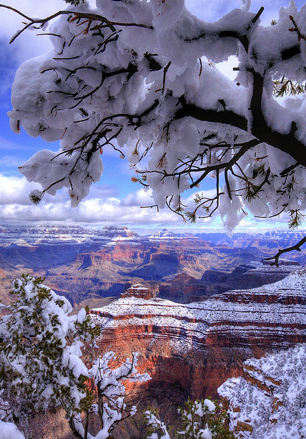 The Grand Canyon with a snow cover