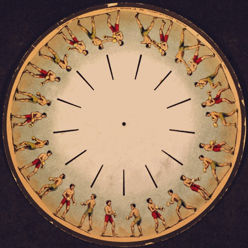 Phenakistoscope, not in motion