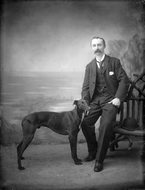 stache-and-dog-ireland
