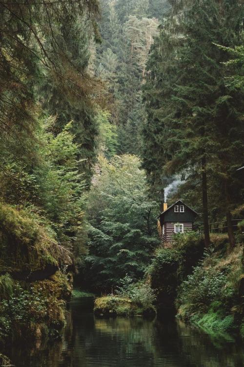 cabin-87