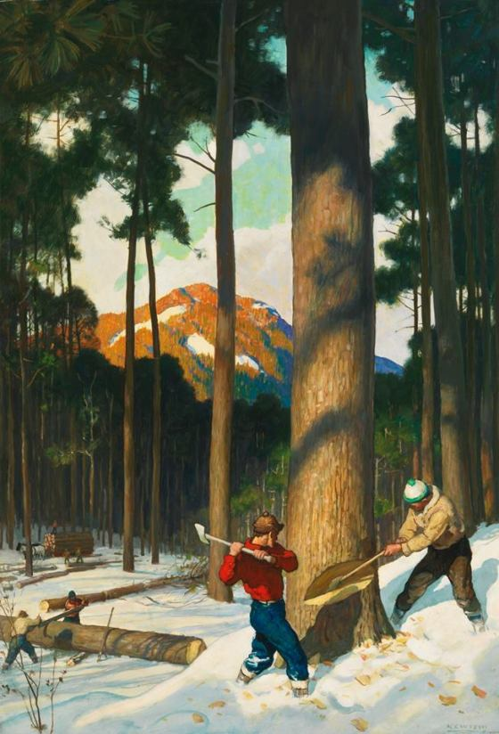 lumberjack-699