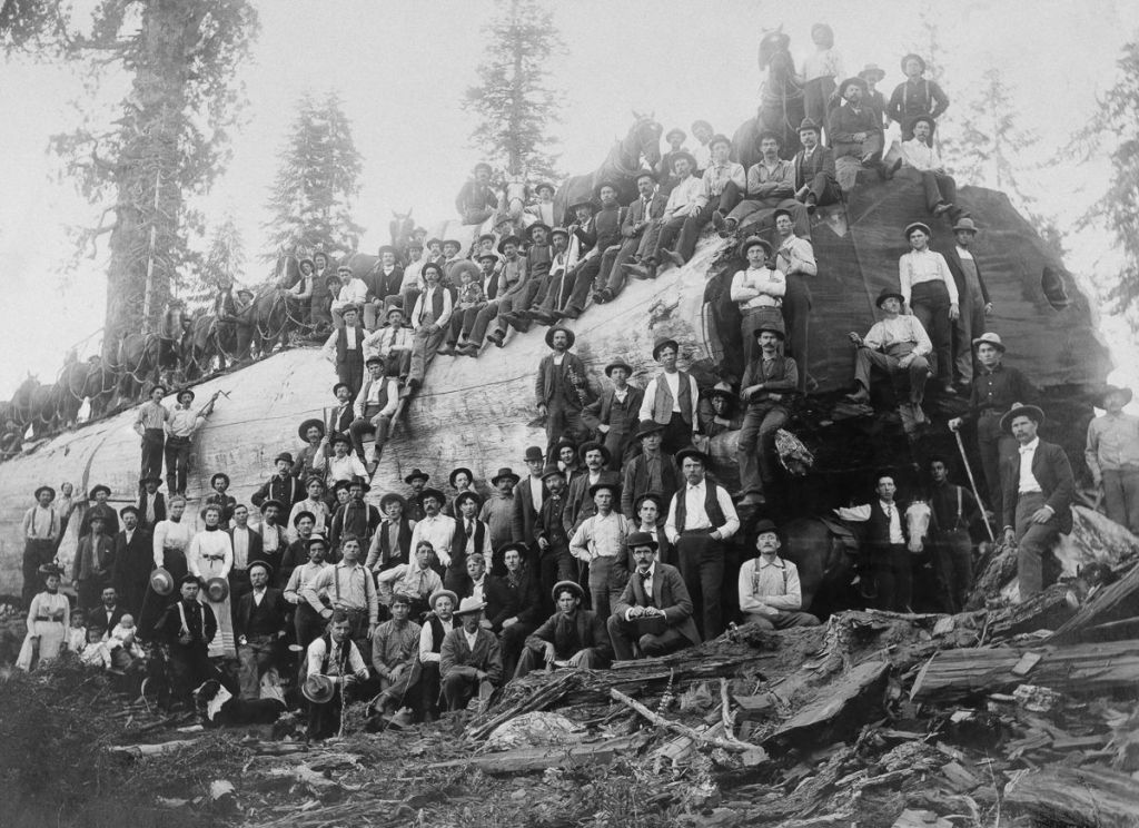 Lumberjacks, group photo, California, 1800s