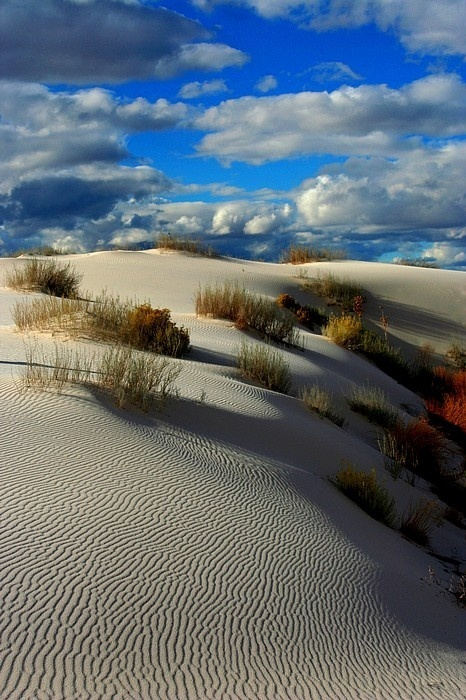 dune-8