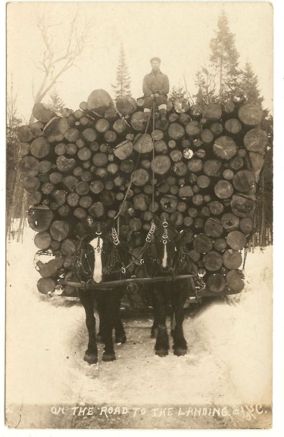 lumberjack-23