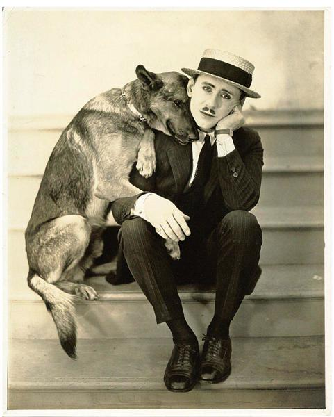 man-and-dog-522