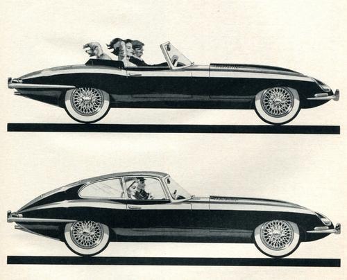 1963-jaguars