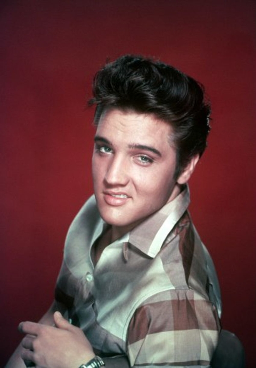 Young Elvis, snarling
