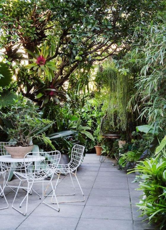 Ian McMaugh garden, Redfern NSW