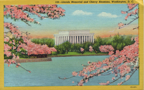 Lincoln Memorial and Cherry Blossoms, Washington, DC